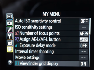 The menu on the Nikon d5500 via the touchscreen.