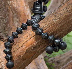 A Joby Gorillapod wrapped around a tree.