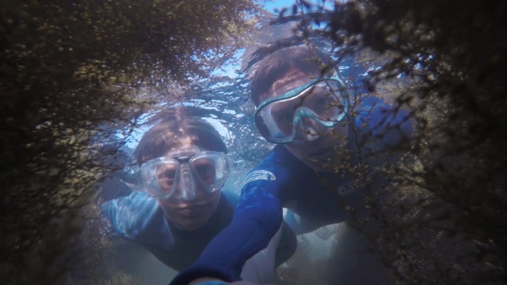 An example of the type of underwater photograph you are able to take with the Olfi One Five.
